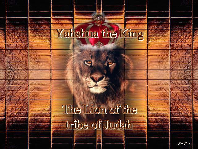 Lion_of_Judah25.jpg